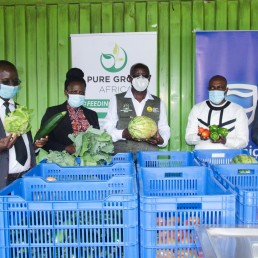 Agribusiness sector